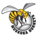 Huntsville Hornets' logo