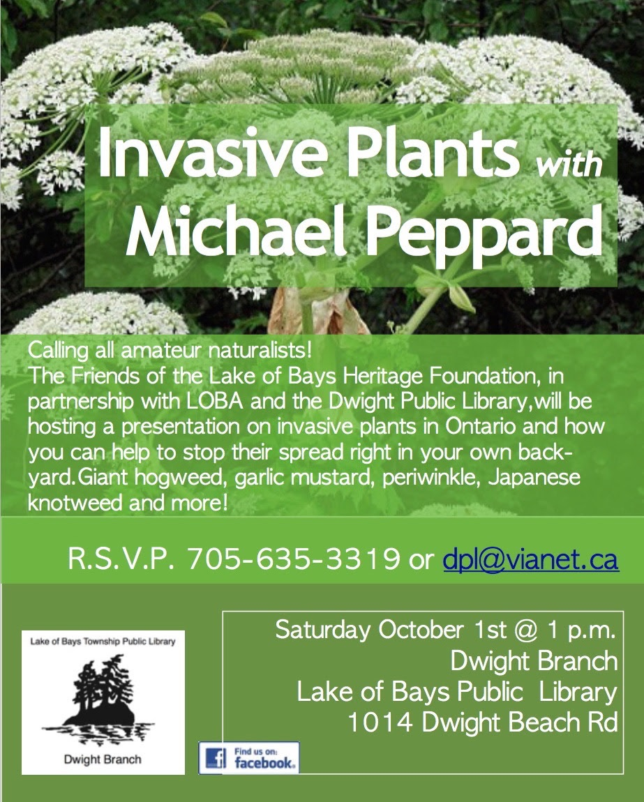 invasive-plants-dwight-library