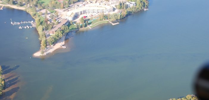 September 22 Algae bloom near Deerhurst Resort on Peninsula Lake (Photo: Brain Tapley)