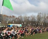 High school cross-country runners finish season strong at OFSAA