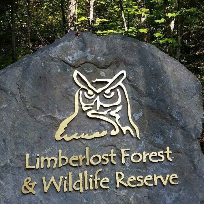 Photo: Limberlost Forest and Wildlife Reserve