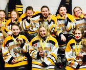 PeeWee Sting Yellow bring home bronze from Walter Gretzky Tournament