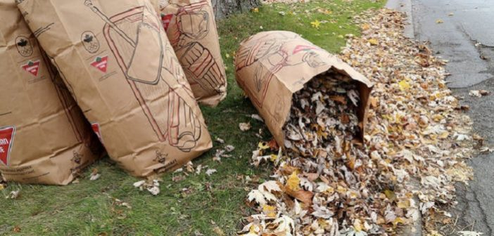 District curbside collection of leaf and yard waste postponed