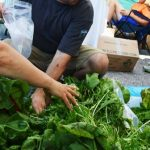 Local gardeners: bring your veggies to the Huntsville 100k Market (Doppler file photo)