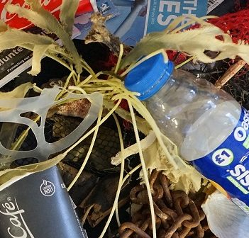 Ocean waste often includes single-use plastics