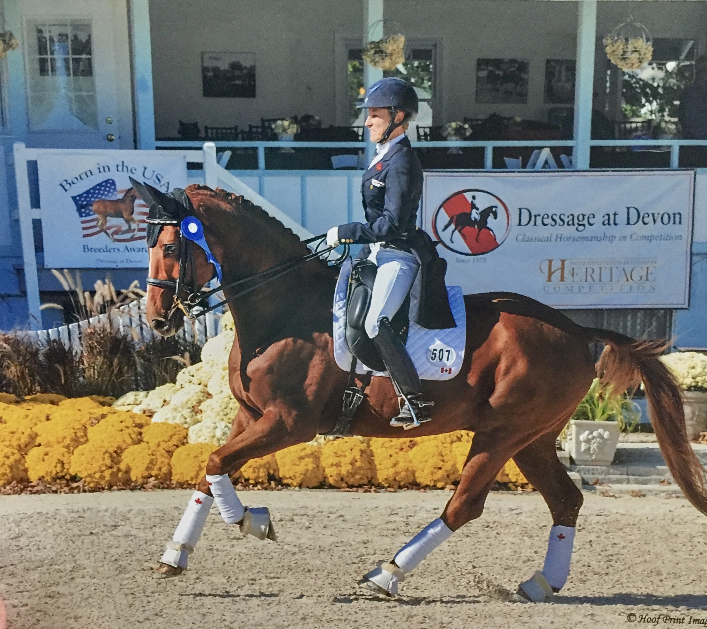 Lori Bell at the Dressage at Devon
