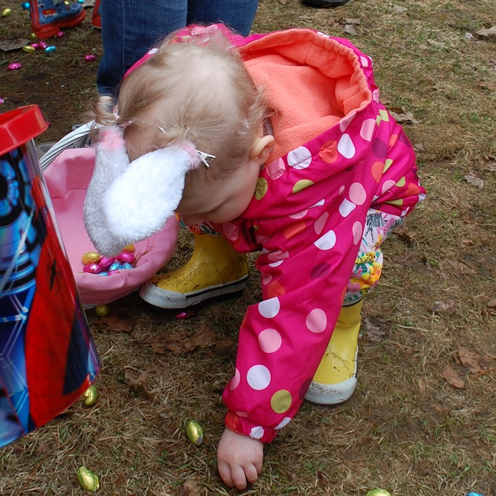 Henley Stroud, 22 months, carefully filled her basket with eggs