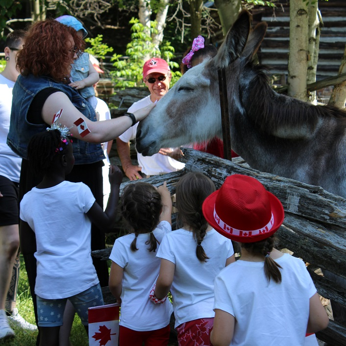 Abby the donkey appears to be enjoying the special attention