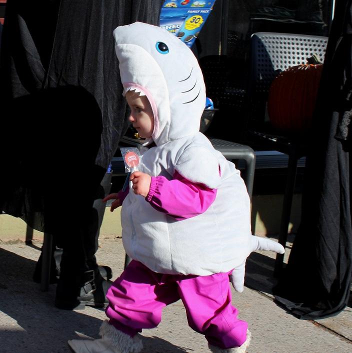 Baby shark doo-doo-doo-doo-doo-doo!