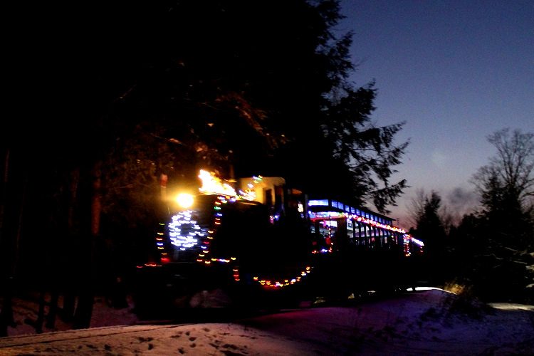 The train winds its way along a forested track adjacent to the Muskoka River.