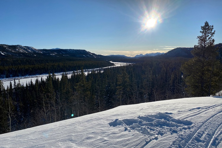 A daytime view from the Yukon Arctic Ultra (supplied)