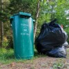 Garbage and green bin (Doppler file photo)