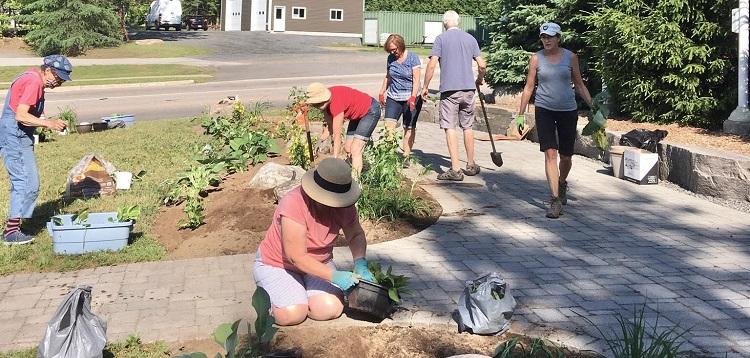 Volunteers plant perennials at Flag Park (Photo Helen Bastedo)